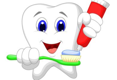 Как выглядит зуб и как корень зуба